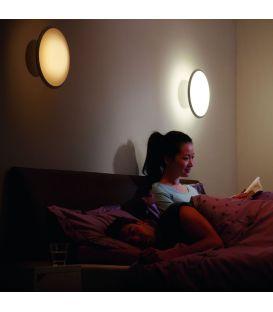 Sieninis šviestuvas HUE PHOENIX LED