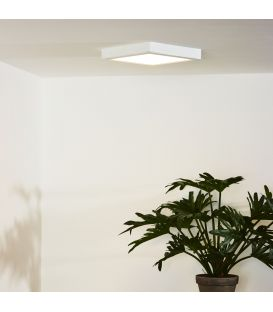 Flush Ceiling Light TENDO-LED Balta 07106/18/31