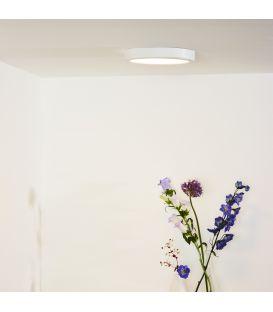 Flush Ceiling Light TENDO-LED Ø22 Balta 07105/18/31
