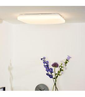 Laevalgusti OTIS LED 43x43 79198/42/61